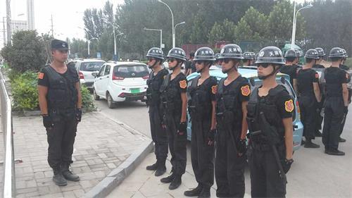 河南研究部署番茄视频官网行业发展